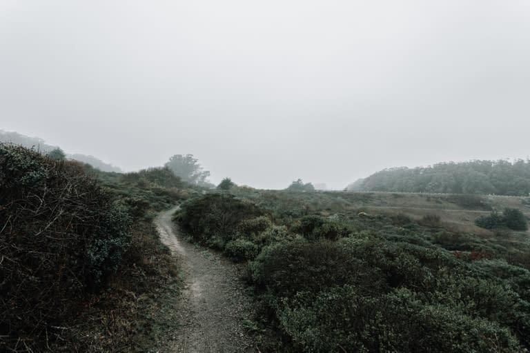 San Francisco Bay Area Landscape Photographer 12