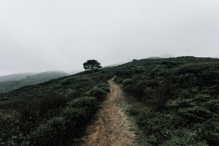 San Francisco Bay Area Landscape Photographer 3