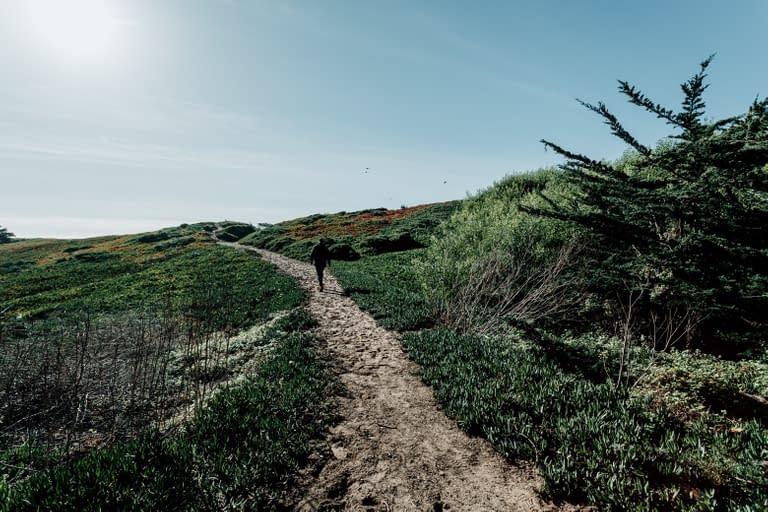 San Francisco Bay Area Landscape Photographer 7
